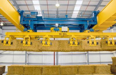 Process cranes for special applications 40182-7